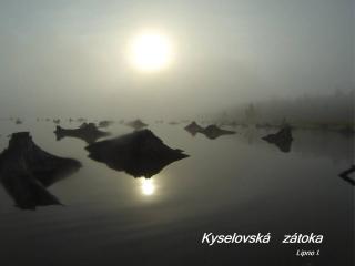 http://seakayakforum.cz/img/m/2674/t/p1av535kc1cd91o381ghf1ttj1qidi.jpg