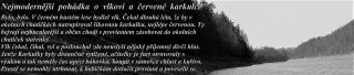 http://seakayakforum.cz/img/m/2674/t/p1f3ht3273jft1uqn157jtphibs3.jpg